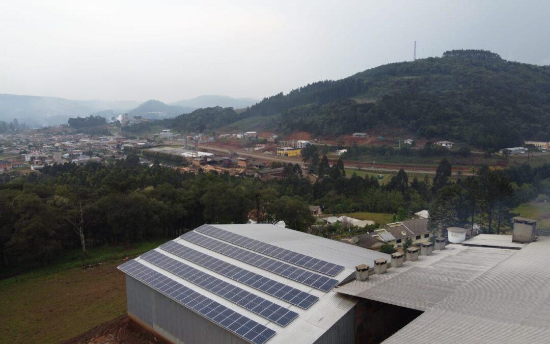 Ervateira Selva – 48,79 kWp